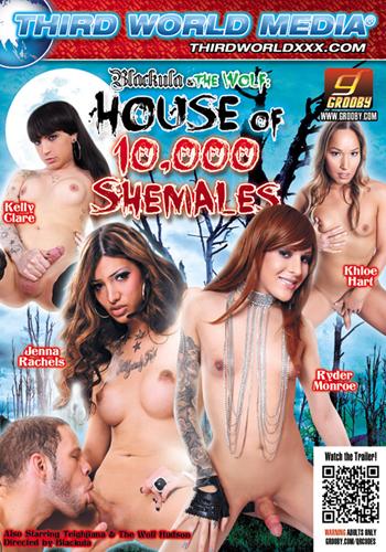 Shenanigans shemale dvd